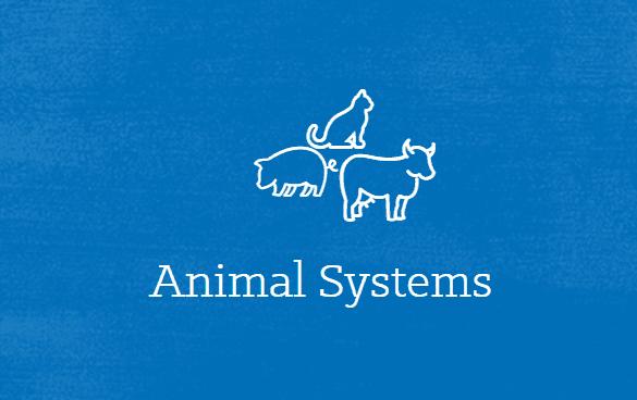 Lesson Plan: Animal Health Careers