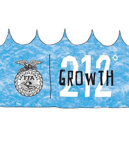 212 Growth Featured Image