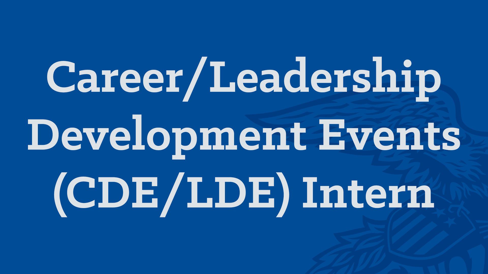 CDE-LDE Intern