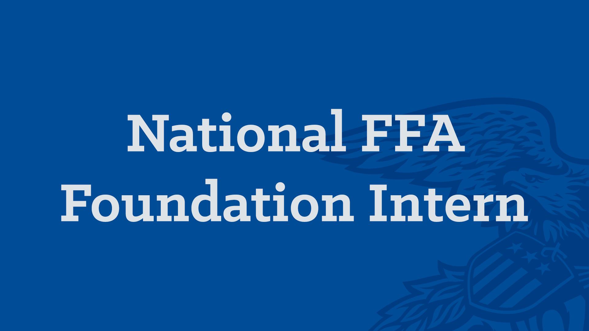 Foundation Intern