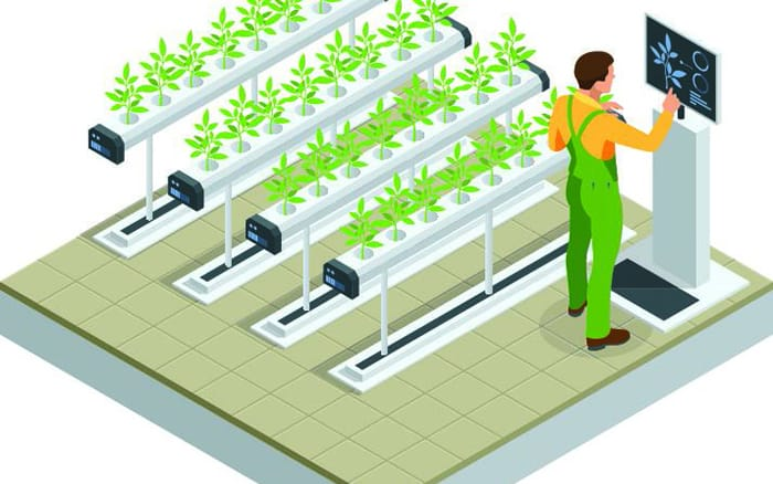 How to Launch Your Own Ag Tech Business