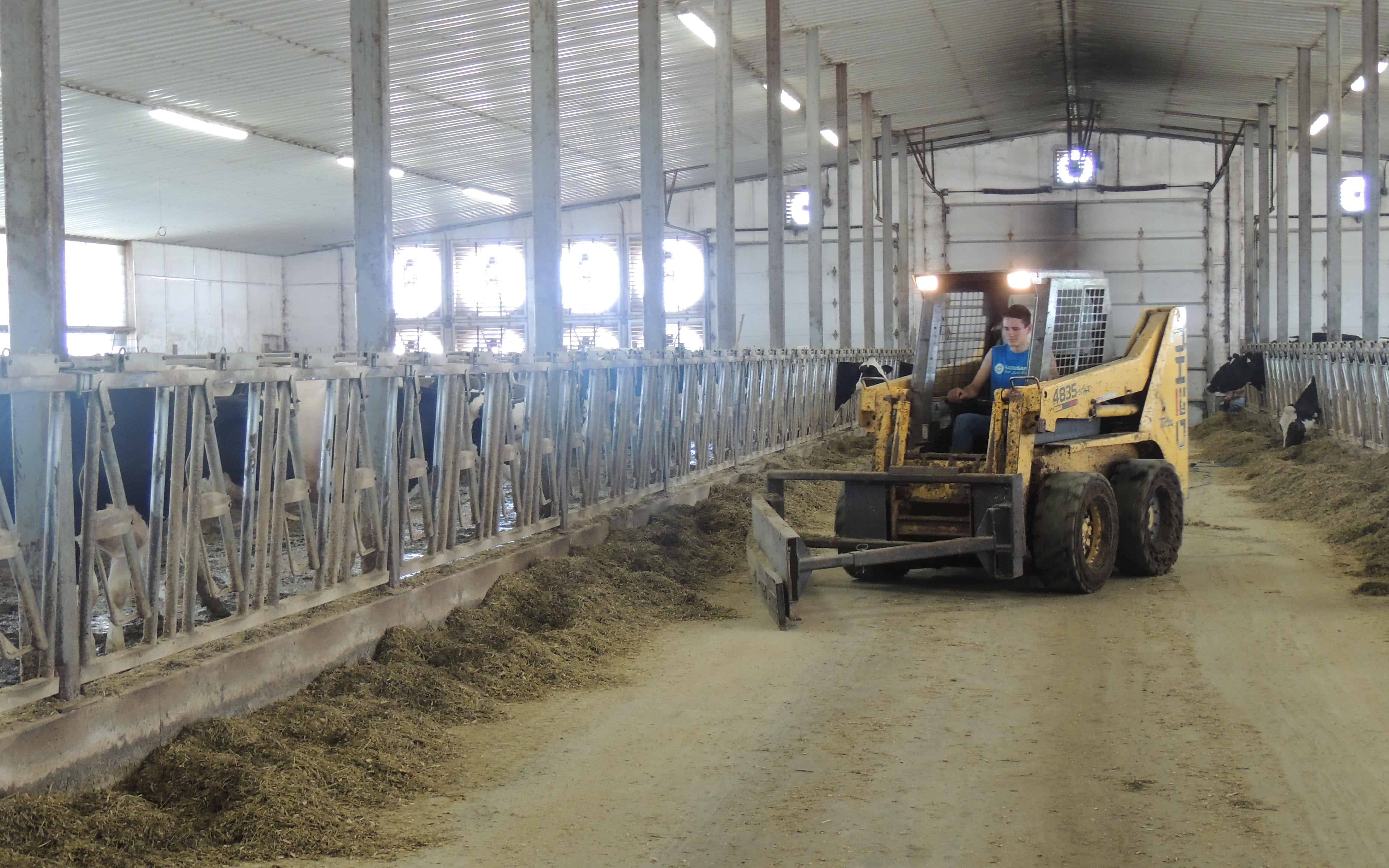 Member Builds a Diversified Dairy Operation