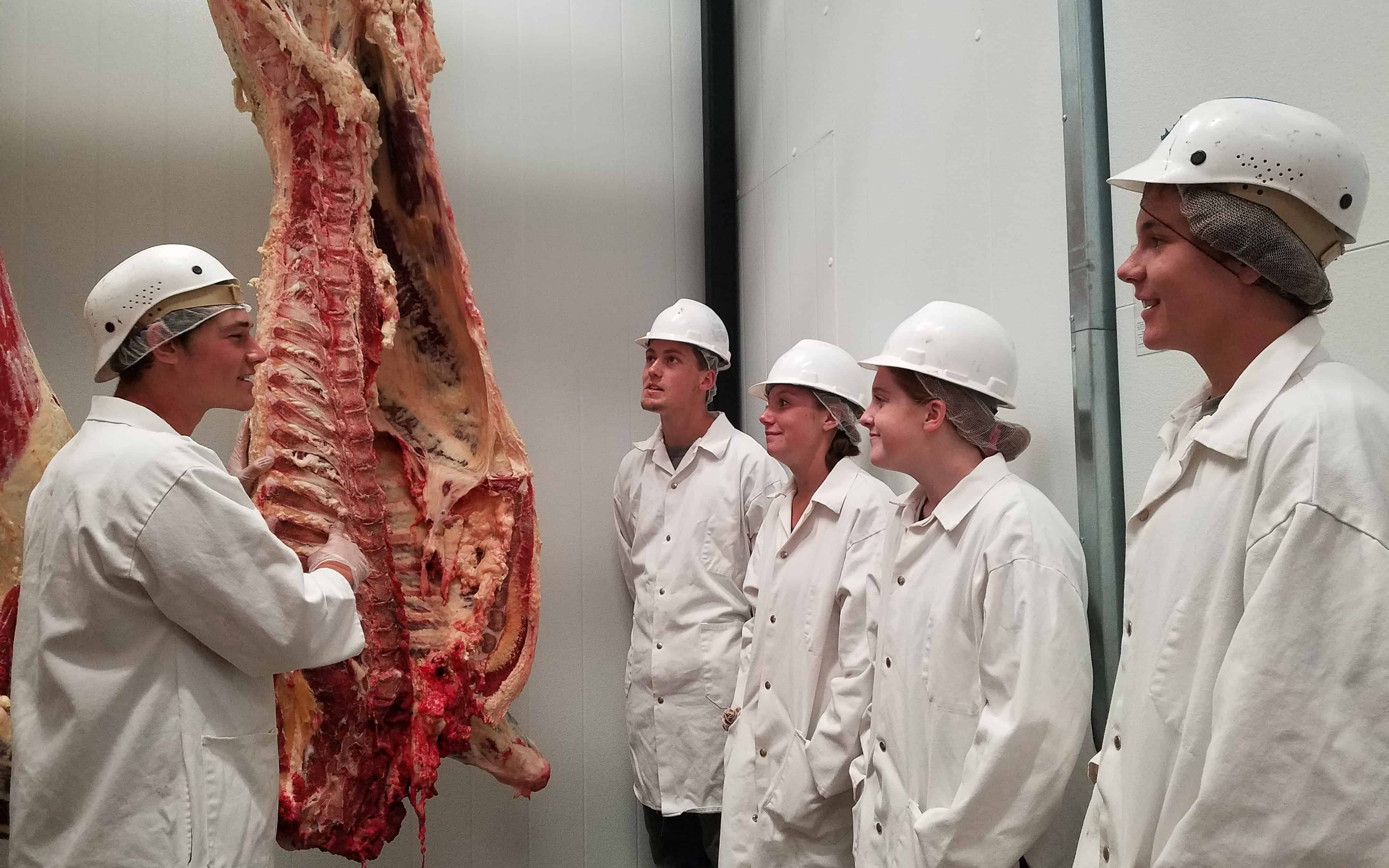 Montana FFA Members Learn to Process Meat