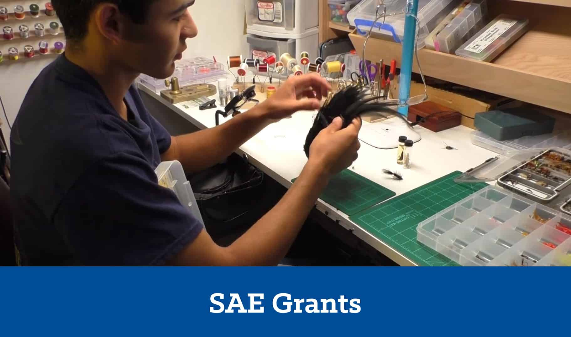 SAE Grants - Application Center