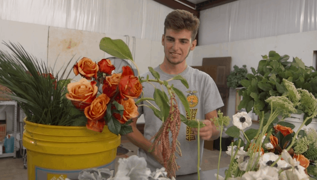 Meet Hadden Powell, 2019 American Star in Agribusiness Finalist