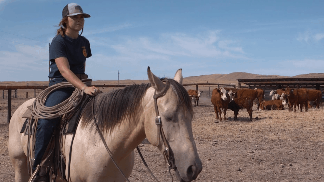 Meet Nicole Harder, 2019 American Star in Agricultural Placement Finalist
