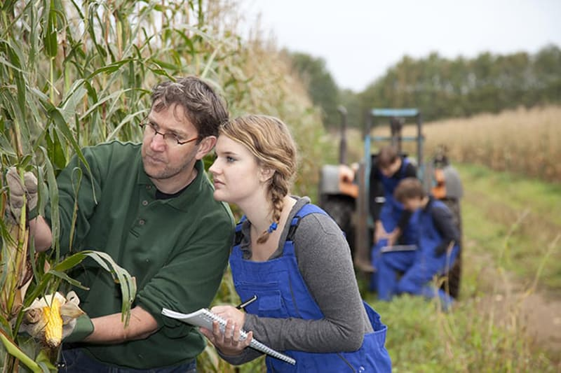 Homepage News Story - Mobile - Cargill and FFA Join to Support Sustainable Ag