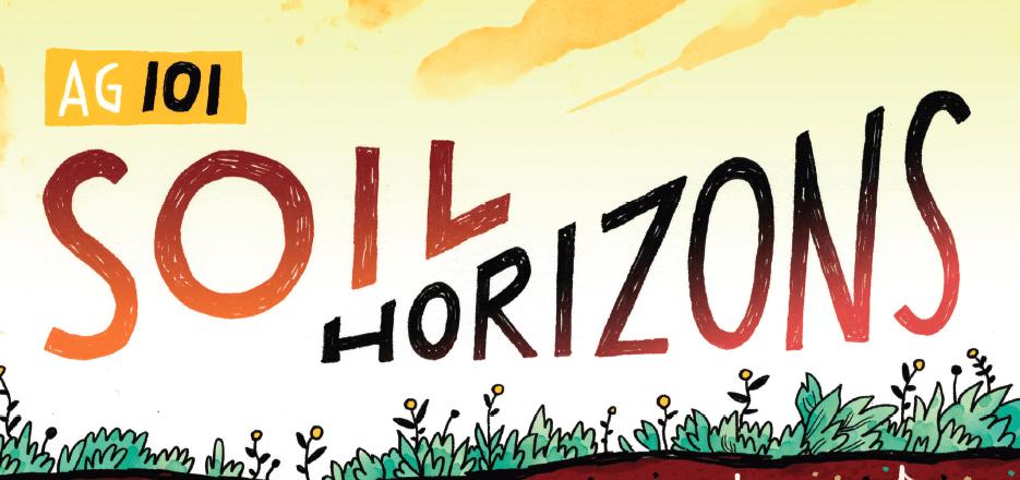 Ag 101: Soil Horizons