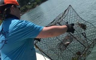 Crabbing SAE