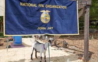 John Jay FFA